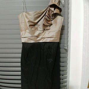 NWOT Elegant dress